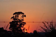 4 Sunset (GFerreiraJr ) Tags: sunset brazil brasil nikon prdosol sp gettyimages nationalgeographic cotia d90 micmarayyo nikond90 flickraward nikonflickraward panoramafotogrfico touraroundtheworld flickrunitedaward brasilemimagens gferreirajr
