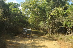 Wilpaththu National Park - Mud - BJ40 (deeptha.net (.)) Tags: mud offroad safari srilanka landcruiser fj40 bj40 wilpaththu