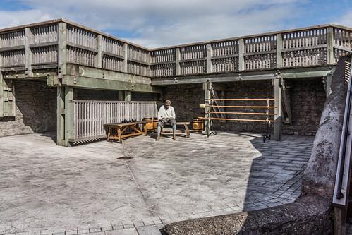 ELIZABETH STAR-SHAPED FORT [CORK] REF-106920