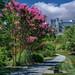 The Biltmore Estate (Asheville, North Carolina)
