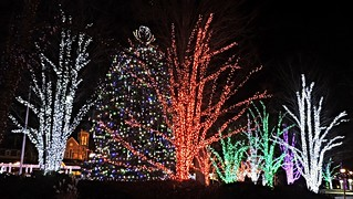 Christmas in Memorial Square