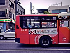 Snap...Solitude... (HARU1231) Tags: streetphoto snapshot city candid color bus girl urban panasonicgf1 korea