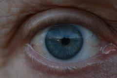 Eye'm Alive - Explored (Clint__Budd) Tags: macromondays alive