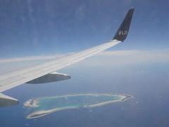 A polynesian paradise!