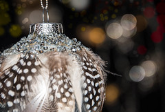 Holiday Bokeh (Maria Eklind) Tags: featherornament feather malmö macromondays sweden bokeh holidaybokeh ornaments christmasdecoration julgranskula skånelän sverige se dof depthoffield juldekoration spirit christmasspirit holidays