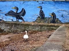Paco Graff (nz_willowherb) Tags: scotland fife newportontay graffiti artistic art work beautiful cheerful