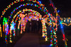 20161218-5D3_5206.jpg (kirkswann) Tags: lights christmas dickinson