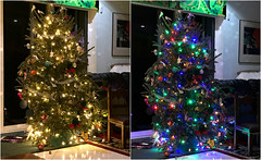 Memories of Christmas 2016 (soniaadammurray - Off) Tags: iphone diptych christmas2016 whitelights colouredlights bokeh christmastree