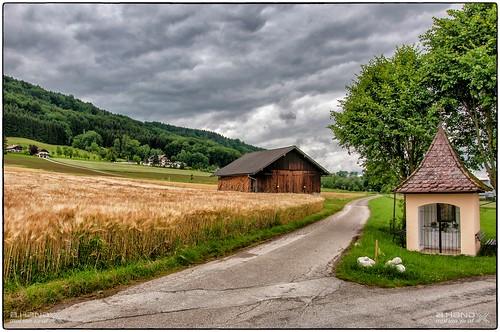 Nußdorf - Blick zum Hauserbichl