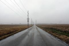 The Road Ahead 01162017 (Orange Barn) Tags: road rain fog powerlines empty barefields winter wet
