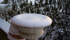 snowed-in planter - Cleveland Heights (Tim Evanson) Tags: winter myhouse snow seasons winter2017