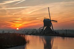 Morning at Kinderdijk (P.Tob-Ys) Tags: morning ice kinderdijk windmill sea freze sunrice clouds grass field kiderdijk unesco rotterdam holland nederlands wind flower