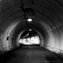 A Tunnel Noir (stephen cosh) Tags: 80mmplanar alloway analoguephotography ayr bw blackandwhite film hasselblad500cm ilfordddx ilfordpanf50 lowlight mono stephencosh tunnel urbandecay urbanphoto