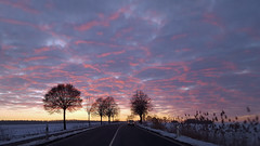 on the way home (explored) (Simple_Sight) Tags: sky sunset road home winter clouds trees wow