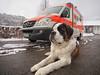 watch out (Paramedix) Tags: ems rettungsdienst drk germany deutschland badenwürttemberg bluelight blaulicht ambulance rettungswagen oberndorf buddy