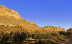 Recordando mis paseos (kirru11) Tags: camino rocas peñas campos huertas hierva árboles luz sombra laluna cielo atardecer quel larioja españa kirru11 anaechebarria canonpowershot