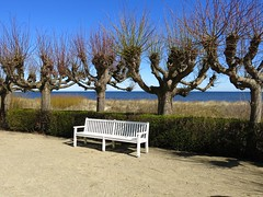 the bench - beach promenade Usedom Germany (claromann) Tags: strand canon bench seat bank planes usedom settee ahlbeck zinnowitz platanen g15 uferpromende claromann