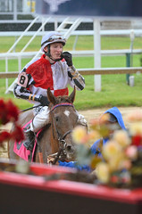 "2015-05-21 (28) r2 Trevor McCarthy on #8 Dance With Ron (JLeeFleenor) Tags: photos photography md marylandracing marylandhorseracing pimlico jockey جُوكِي ""赛马骑师"" jinete ""競馬騎手"" dżokej jocheu คนขี่ม้าแข่ง jóquei žokej kilparatsastaja rennreiter fantino ""경마 기수"" жокей jokey người horses thoroughbreds equine equestrian cheval cavalo cavallo cavall caballo pferd paard perd hevonen hest hestur cal kon konj beygir capall ceffyl cuddy yarraman faras alogo soos kuda uma pfeerd koin حصان кон 马 häst άλογο סוס घोड़ा 馬 koń лошадь rain winner maryland"