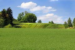 IMG_6222 Green paradise - Seen in Explore - 2015-06-24 # 169 (jaro-es) Tags: panorama verde green nature canon landscape natur natura paisaje explore grün landschaft naturesfinest czechrep naturewatcher platinumheartaward eos70d naturemaster