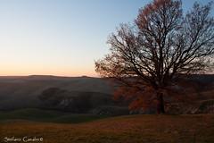 (telemaco0910) Tags: cretesenesi impressioni seneseclays sienalandscape stefanocasalini tramonto alcalaredellasera immaginare incondizionato unconditional