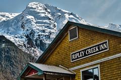 Ripley Creek Inn (Last Frontier Heliskiing) Tags: town bc britishcolumbia columbia powder lodge mining alpine stewart ghosttown british miningtown skitown ripleycreekinn heliskiingbc heliskibc lastfrontierheliskiing