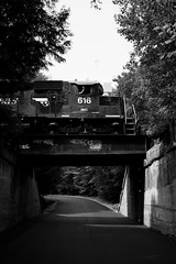 Monochrome 616 (Thomas Coulombe) Tags: bridge blackandwhite bw monochrome photography graffiti trains panam 616 freighttrain powa sd402m panamrailways
