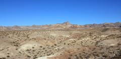 2011_11_30_3587.jpg (DrPKHouse) Tags: arizona unitedstates loco goldenvalley bouse