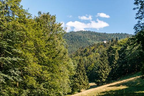 Vers les cascades Gertelbach-Wasserfälle
