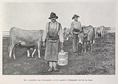 Buronnier (Université de Caen Normandie) Tags: bibliothèquehistoriqueduministèredelagriculture bibagri mrsh industrielaitière lait racesbovines aubrac laguiole buronnier