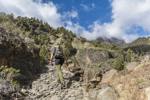 Canyon of fear la palma woman climbing path