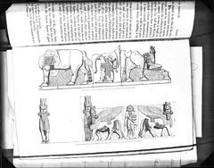 img718 (foundin_a_attic) Tags: book page text glass slide plate negtive black white vintage khorsabad kouyuniik