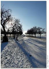 Wintertag / Winterday (Mr.Vamp) Tags: winter schnee snow wintertag winterday mrvamp eos 70d canon 70 d canon70d