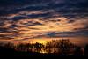 Suns Disappearance appears great [explored] (photographe_d) Tags: danielkölblinger winter sunset sky clouds orange blue silhouette trees klagenfurt austria outdoor landscape sun gold