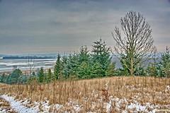 Winter-Impression (garzer06) Tags: grün weis deutschland buschvitz landschaftsbild schnee schneelandschaft landschaftsfoto eis baum landscapephotography vorpommernrügen naturephotography naturfoto landschaftsfotografie naturfotografie vorpommern inselrügen mecklenburgvorpommern insel rügen