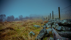 The fence (Tommy Høyland) Tags: grass landscape vibrant mist frech devide outdoor evening stones wet january vignetting tree pole farmland hiking barbed wire blue fog distant depth line fence barbedwire