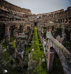 Coliseo (Jose Peral Merino) Tags: roma coliseo ruinas italia imperioromano panoramica