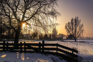 2013-01 Een gouden wintermorgen in de polder - Zwartewaal/NL