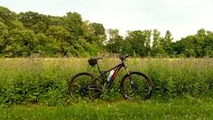 2015 Trek Fuel EX 9 (abysal_guardian) Tags: park ex bike trek state outdoor mountainbike samsung 9 galaxy mtb delaware wilmington bellevue fuel s5 275 2015 650b trekfuelex9 smg900t