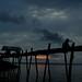 the fishman@Pompom Island