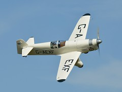 Percival Mew Gull G-AEXF (Fleet flyer) Tags: gull bedfordshire shuttleworth percival racer mew mewgull shuttleworthcollection oldwarden percivalmewgull gaexf racingaircraft percivalmewgullgaexf