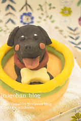 Your dog figure cake (INUGOHAN_WORLD) Tags: food dog cooking dogs cake recipe poodle foodart dogcake cakeclass dogsweets dogrecipe figurecake dogrecipes