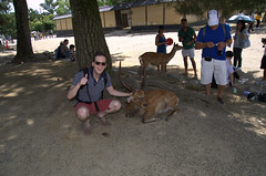 With a deer
