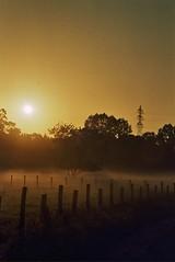 (CroytaqueCie) Tags: sunrise nantes expiredfilm minoltadynax4 kodakgold1006 sèvrenantaise
