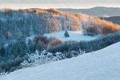 Bieszczadzka zima (Mirek Pruchnicki) Tags: wetlina województwopodkarpackie polska bieszczady bieszczadzkiparknarodowy zima winter mountains snow