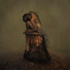 connecting (brookeshaden) Tags: brookeshaden fineartphotography nature newzealand rotorua