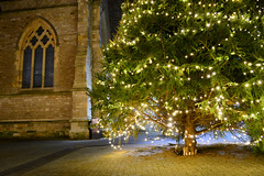 Popping Around the Christmas Tree (Inner Vision Productions) Tags: stthomas square newport isleofwight christmas tree lights illuminated fairy string old church traditional festive season 2016 yuletide yule fir evergreen pine religious religion christianity jesus christ birthday celebration tradition architecture street town light lamp glowing yellow orange nikon d5200 dslr kitlens 1855mm longexposure night dark bright vivid contrast colour innervision mattblythe panorama