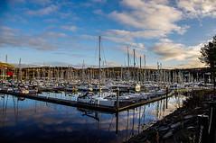 Kip Marina Reflections (Brian Travelling) Tags: yachts marina reflection kip inverkip inverclyde scotland sky blue