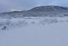 Cerknica Lake (happy.apple) Tags: otok cerknica slovenia si cerkniškojezero cerknicalake slovenija winter zima intermittentlake presihajočejezero snow sneg javorniki rešeto