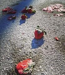 Crime scene (V and the Bats) Tags: instagram mobilephonephoto samsungm840 crimescene strawberries fruits almostmarmelade murderedstrawberries