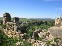 Ruins and view of distant mountains, Volubilis, Morocco (Paul McClure DC) Tags: morocco almaghrib fèsmeknèsregion volubilis jan2017 roman architecture historic scenery